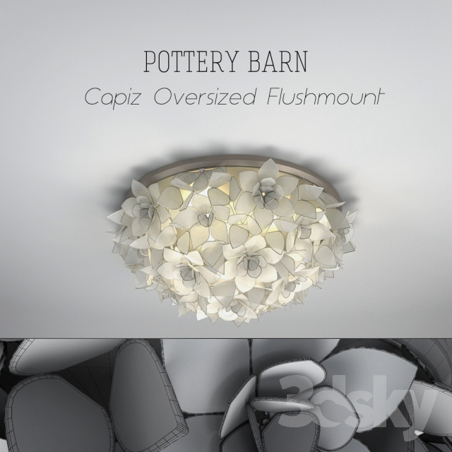 Pottery Barn Ceiling Light Fixtures: POTTERY BARN Capiz Oversized
