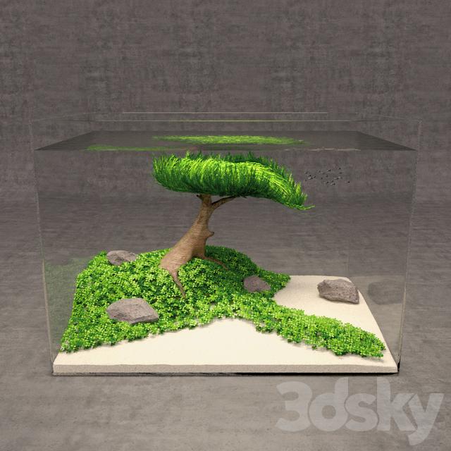 Aquascape Tree: 3d Models: Other Decorative Objects