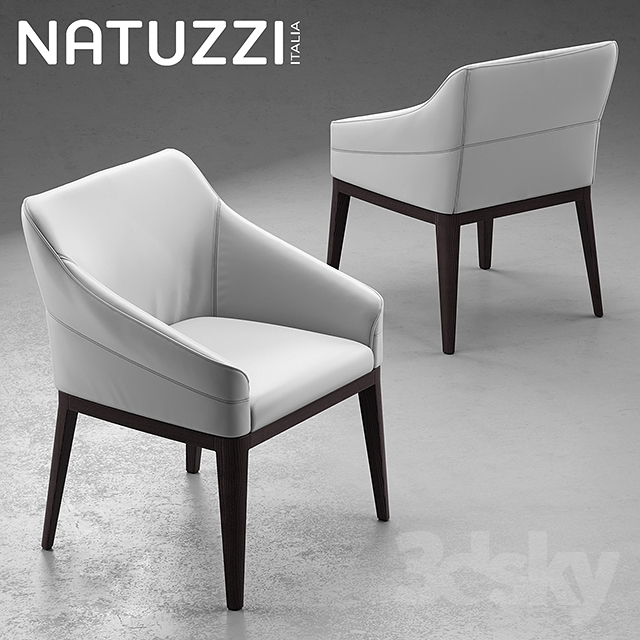 3d Models: Table + Chair   Table And Chairs Natuzzi Minerva, Saturno, Vesta