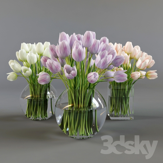 3d Models Bouquet Three Vases With Tulips