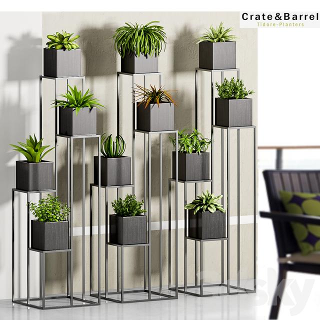 3d Models Indoor Plant 33