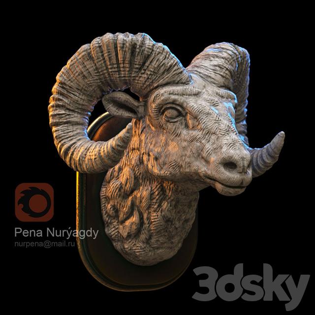 Portrait of a mountain goat