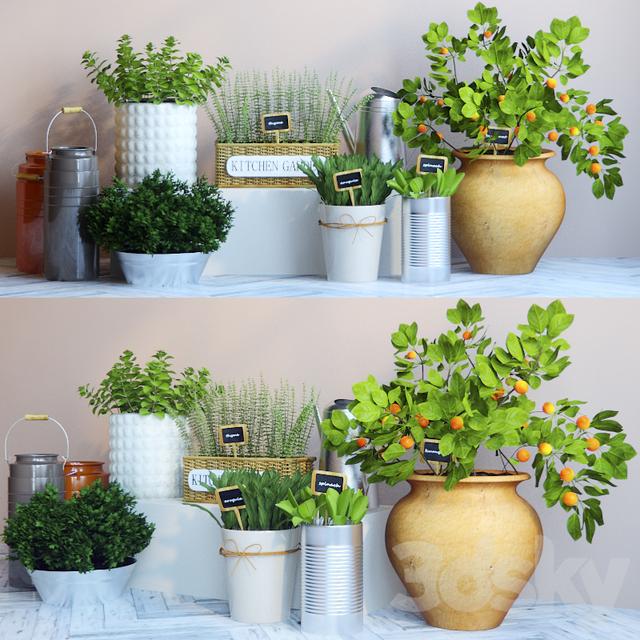 3d models: Indoor - Kitchen garden 4