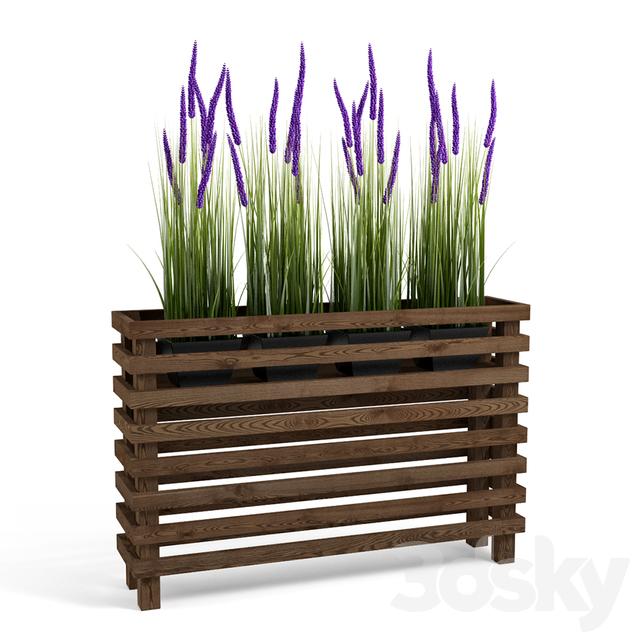 Plants set 02