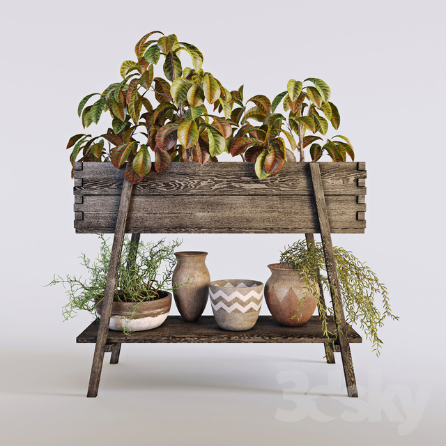 3d models plant terrace plants 3 for Terrace plants