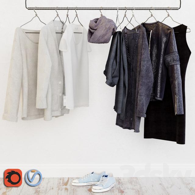 Wardrobe in the Scandinavian interior