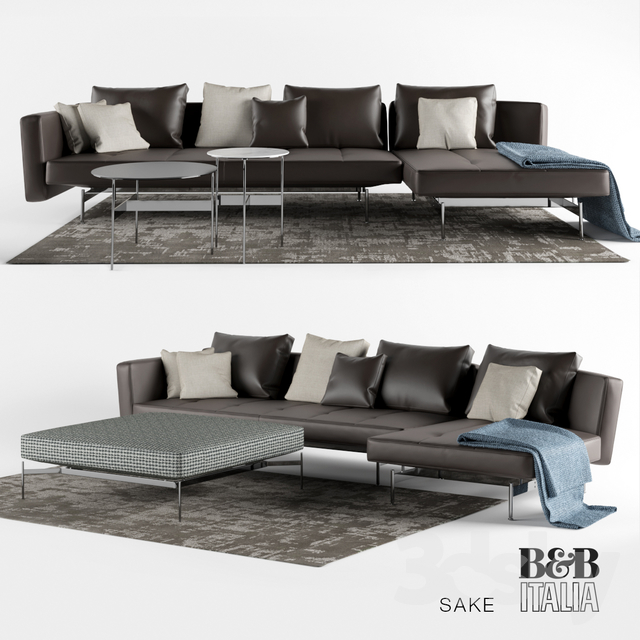 3d models sofa sak sofas by b b italia. Black Bedroom Furniture Sets. Home Design Ideas