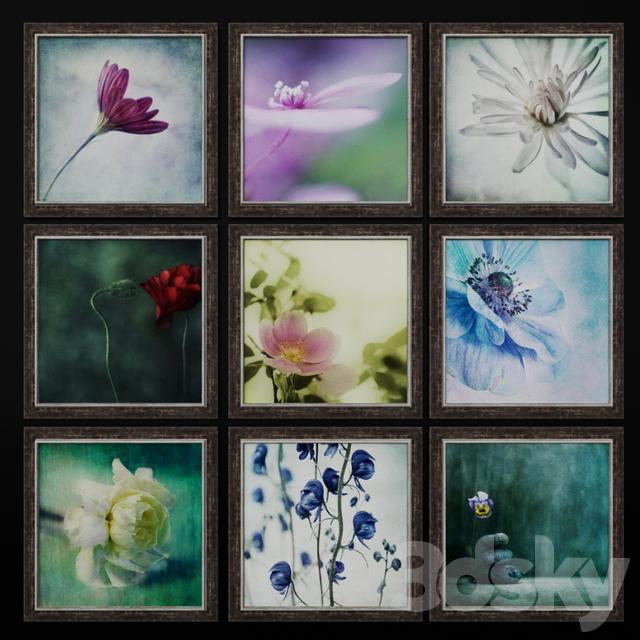 A series of works by Flowers by Priska Wettstein