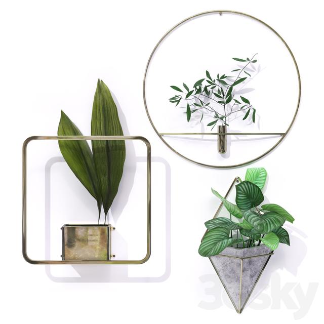 Metal Frame Plant Pot