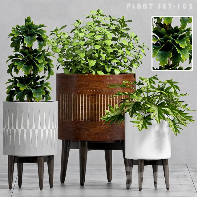 PLANT SET -102