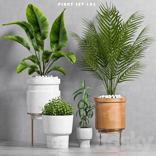 PLANT SET -103