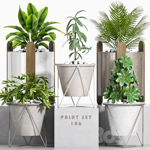 plant set-106