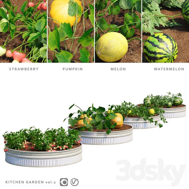 Garden   Kitchen garden.vol 2