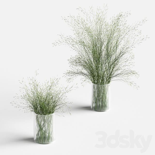 Grass in vases 2