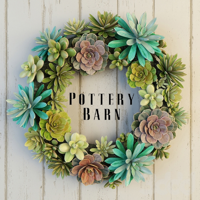 Pottery Barn Succulent Wreath