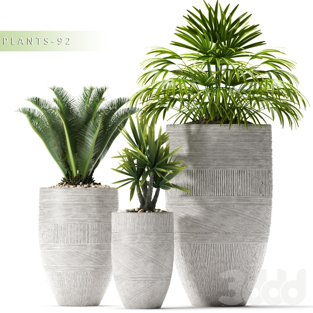 PLANTS 92