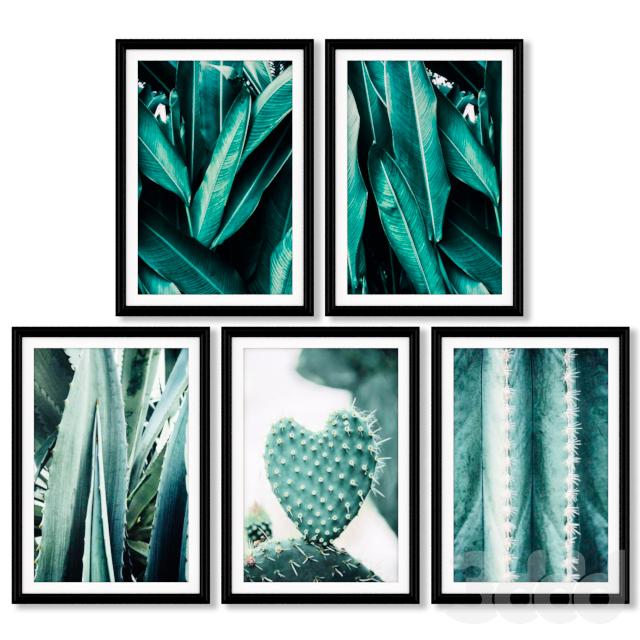 Серия постеров с кактусами и листьями тропических растений.