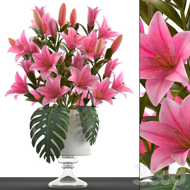 Коллекция цветов 49. Букет Лилий.