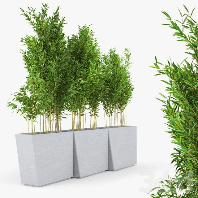 Twista Contemporary Modern Outdoor Planter Pot Bamboo Muriel