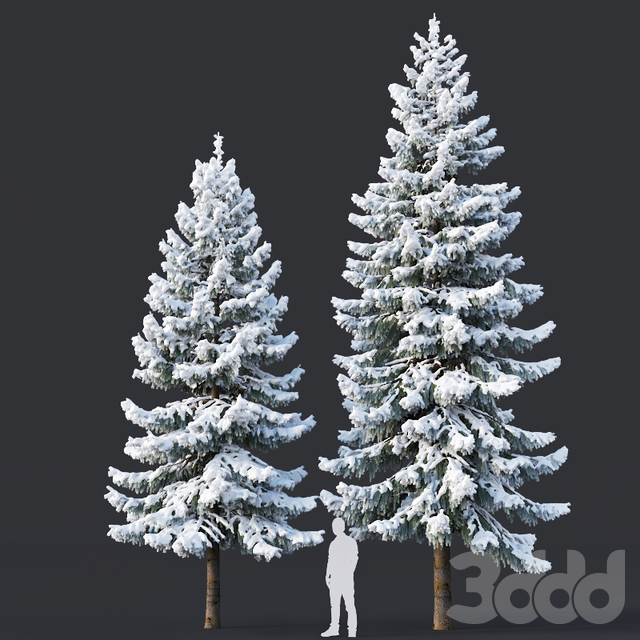 Spruce #6 Two sizes H8-10m. Modular branches