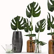 3d Model Decor Plants Download 3dsky Org