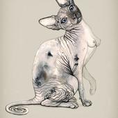 кошка с титьками)))