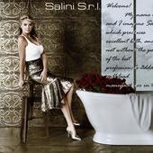 Salini S.l.r.