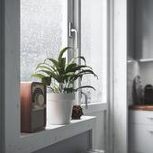Rainy Kitchen