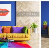 Colorfull life