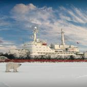 Властелин  Арктики