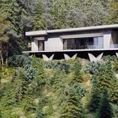 Дом в хвойном лесу