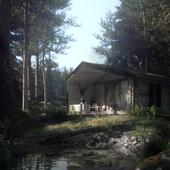 Лесной релакс