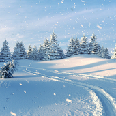 Let it snow)