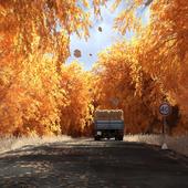 Autumn's the mellow time