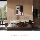 A SENCE OF SPACE