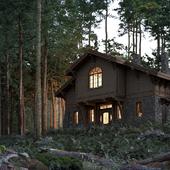 """House in woods. Progect """"Arkadia"""""""