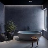 Санузел с отдельно стоящей ванной