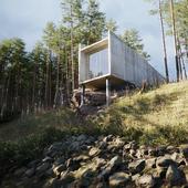 дом в лесу с подвохом