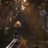 Forest House,environment