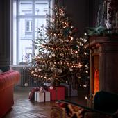 Merry Christmas and ̶H̶a̶p̶p̶y̶...and stay safe.