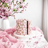 CGI Pink Cake 3D