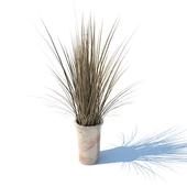 ваза с травой