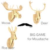 Moustache / trophies