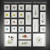 """Collection of paintings """"Plants"""""""
