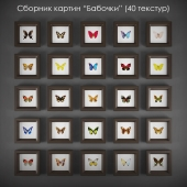 """Collection of paintings """"butterflies"""""""