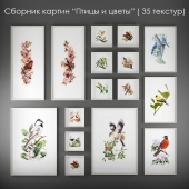 """A collection of paintings of birds and flowers """""""