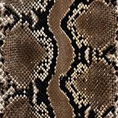 animal patterns (Шкура)2
