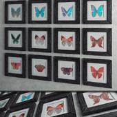 """Набор """"Butterfly"""""""