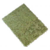 Carpet with long pile