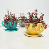 flowers in vases, cups (cup flower pots)